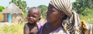 Kamp mot sjukdomar i byarna